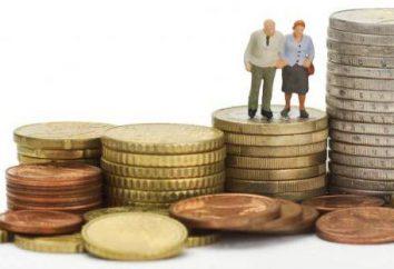 programma di co-finanziamento delle pensioni. programma di pensione di co-finanziamento statale