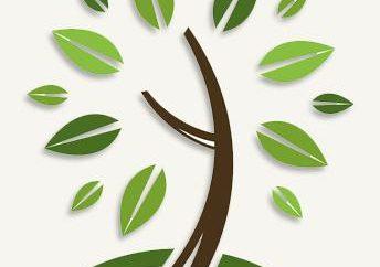 Sicurezza ambientale in azienda. Ecologia produzione