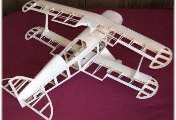 Dlaczego self-made up samolotów w wieku do sklejania