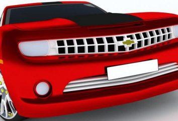 L'elenco dei documenti per l'immatricolazione dei veicoli: raccogliere carta e mantenere le scadenze