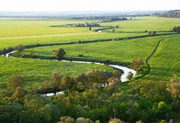 Cichy Pine River: opis, święta, zdjęcie