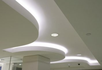 candeeiros de tecto para tectos falsos: luzes LED como a melhor opção