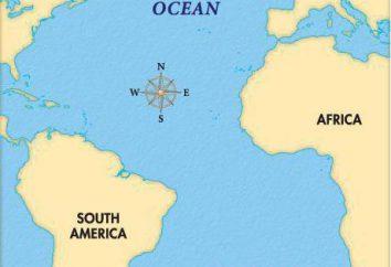 Georgia del Sud e isole Sandwich del Sud. Atlantico