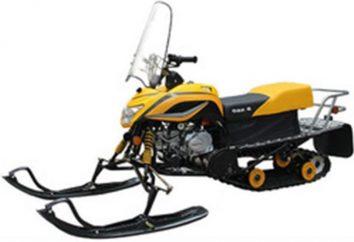 """Schneemobile """"Dingo"""" – schnelles Fahren auf Schnee"""