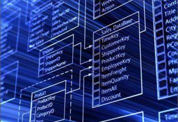 Che cosa è un progetto di tecnologia? Sviluppo del progetto tecnologico. Un esempio del progetto tecnologico