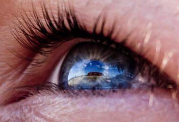 Diagnosi di vista. Metodi di diagnosi di vista. Diagnostica computerizzata dei occhi Mosca: le migliori cliniche