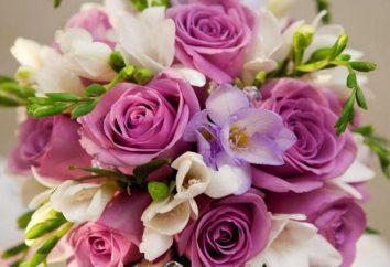 La classificazione delle rose, gruppi caratteristici