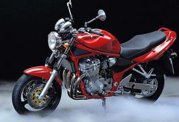 Suzuki Bandit 600: dane techniczne, zdjęcia i opinie