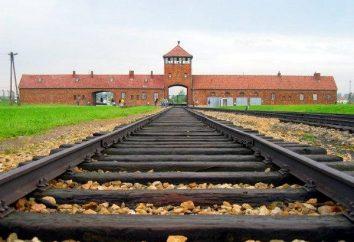 Auschwitz – l'endroit le plus inhumain sur Terre