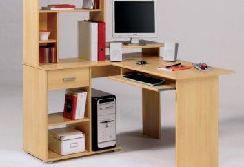 Les petits bureaux d'ordinateur: le problème du choix