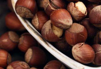Nocciola (nocciola): semina e cura. Hazel krasnolistnyh