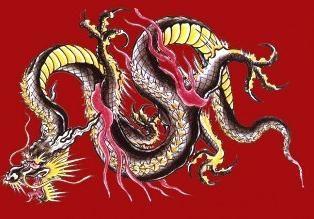 dragon chinois – un symbole de prospérité