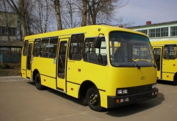 Bus « Bogdan »: les performances du moteur, la consommation de carburant, réparation
