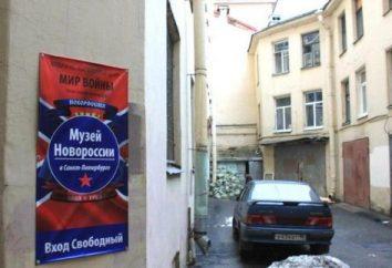 Museo Nuova Russia a San Pietroburgo: una rassegna di storia e fatti interessanti