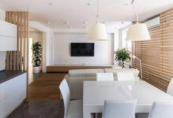 stile loft in interno piccolo appartamento: consigli su registrazione