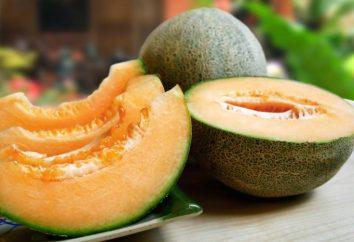 Melon: la teneur en calories par 100 grammes. Avantages et inconvénients de melon