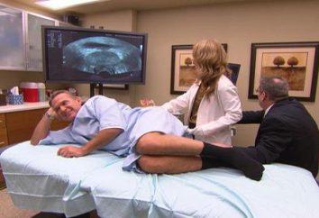 Prostata Ultraschall – Anzeigen, Vorbereitung und Durchführung der Technik