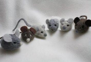 hobby affascinante: infeltrimento della lana per i principianti laboratorio