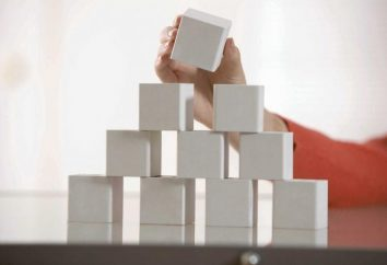 Struktur der Organisation – ist die Grundlage des Erfolgs