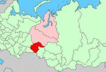 Czerwona Księga Regionu Tyumen: Rośliny, Zwierzęta, Ptaki