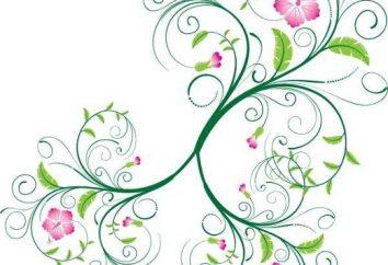 Te różne wzory kwiatowe