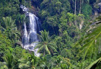 ¿Qué es la zona natural? Tipos y características