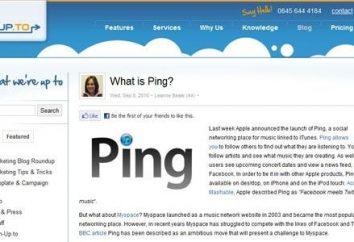 Lo que es de ping, sus características