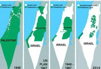 Bandera de Palestina: fotos, historia del origen y la fecha