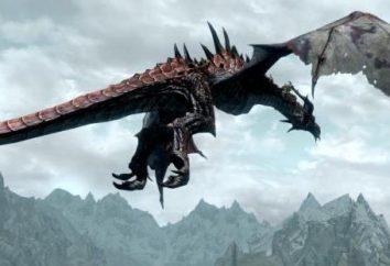 """Passagem de """"Skyrim"""" """"Casa devorador do mundo"""". Descrição busca"""
