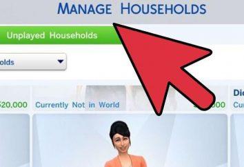 """Wie die Familie in """"The Sims 4"""" zu entfernen: die Geheimnisse und Tricks"""