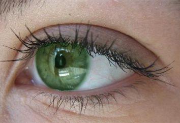 Home magic: cómo cambiar el color de los ojos en casa