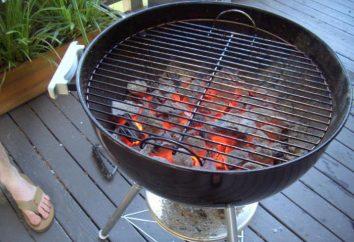 Griglia a carbone. Barbecue grill. Recensioni, prezzi