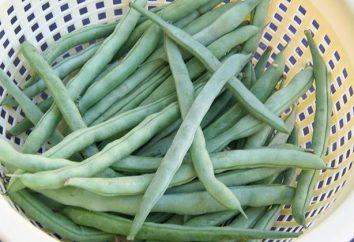 Wie grüne Bohnen einzufrieren den Vorteil zu behalten?