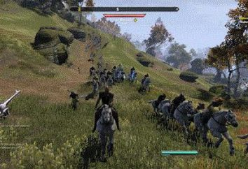 The Elder Scrolls Online: Systemanforderungen für das Spiel