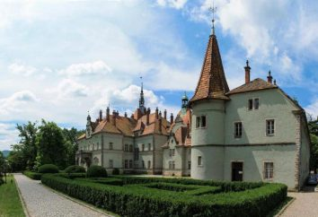 Château Schönborn, Transcarpatie: description, histoire