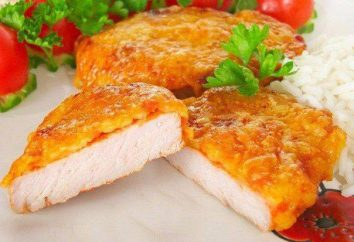 Filet de poulet dans la pâte de fromage: les meilleures recettes du monde