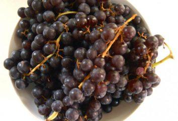 winogrona galaretki. Jak gotować galareta winogron: przepis