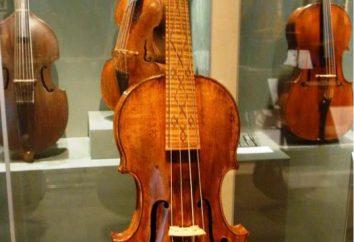 Nicolo Amati: Biographie, vor allem Instrumente Amati-Dynastie, die Jünger von St. Nikolaus