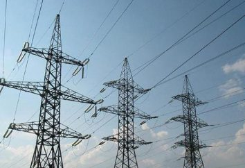 O mercado grossista de electricidade. Gerando Empresa do Mercado Atacadista de Energia