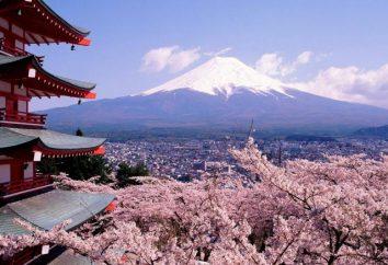 Japão. Natureza do Japão: descrição