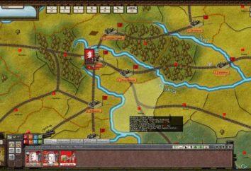 Spiel über den Bürgerkrieg in Russland: Bewertung