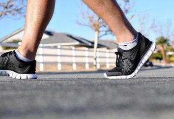 Welche Muskeln arbeiten beim Gehen? Vorteile des Gehens