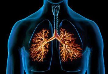 Les causes et les symptômes de la bronchite chez un enfant