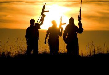 L'estremismo e il terrorismo – una minaccia per la società. Cyber-terrorismo: una minaccia per la società dell'informazione