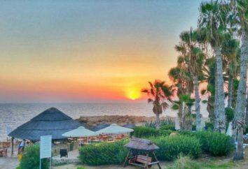 Cynthiana Beach Hotel 3 * (Chipre / Paphos): descripción del hotel y comentarios