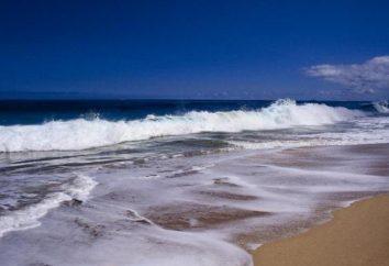 Tide – ¿qué es esto? ¿Qué causa las mareas