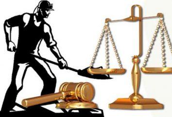 Il contenuto del concetto, tipi e classificazione dei principi del diritto del lavoro