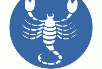 Scorpione. Man. carattere