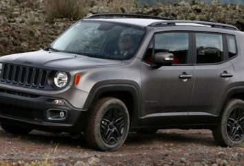 Jeep składzie: obecne modele