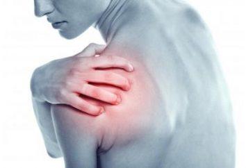 La douleur dans l'articulation de l'épaule: traitement et prévention